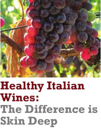 Heathy Italian wines header winter TM 2010