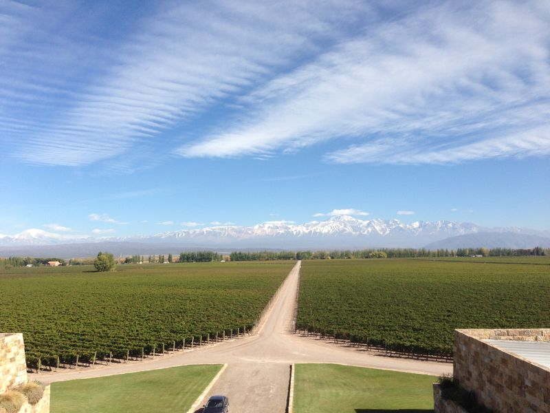 View from Catena Zapata by Courtney Quinn